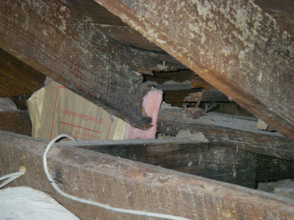 Roof Framing damage